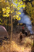 Camping At Buckeye Campground Fall camping at Buckeye Campground, Bridgeport, California