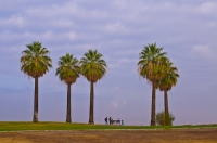 DT-CA-2144  Family enjoying the panorama at Panorama Park, Bakersfield, California.
